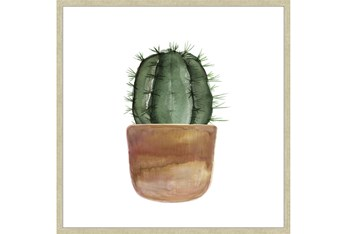36X36 Short Cactus With Champage Frame