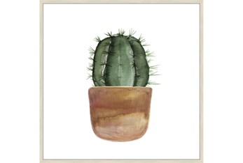 45X45 Short Cactus With Brich Frame