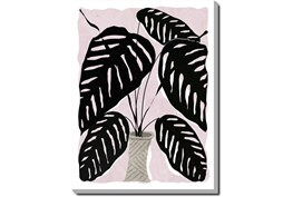 30X40 Pink Botanical II With Gallery Wrap Canvas