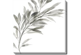24X24 Watercolor Leaf Grey With Gallery Wrap Canvas