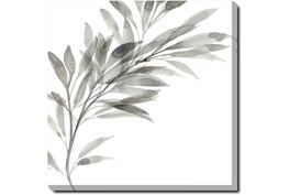 45X45 Watercolor Leaf Grey With Gallery Wrap Canvas